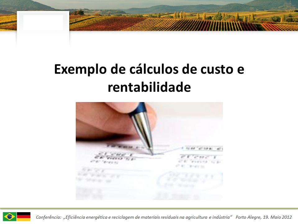 Exemplo de cálculos de custo e rentabilidade