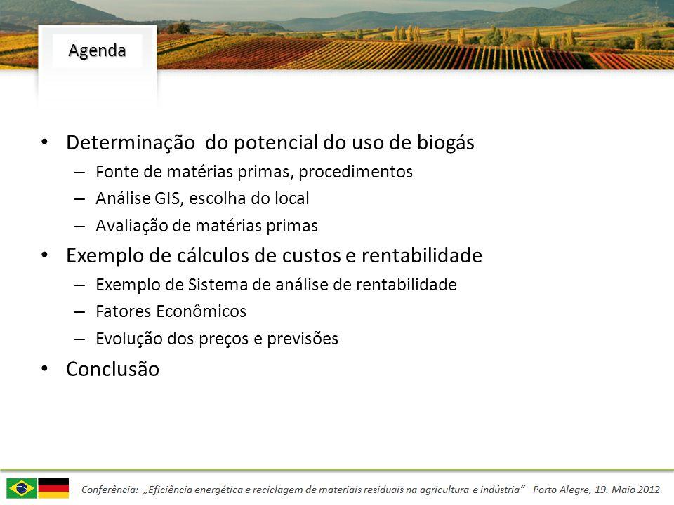 Determinação do potencial do uso de biogás