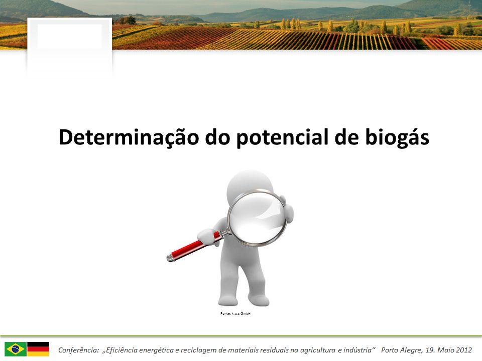 Determinação do potencial de biogás