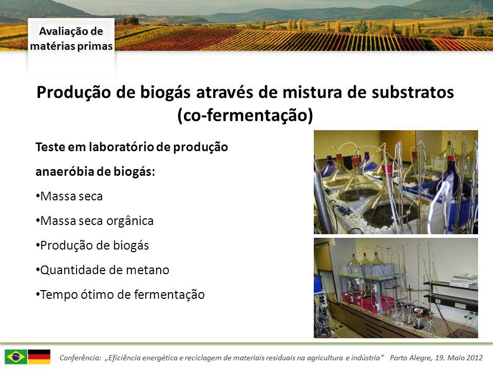 Produção de biogás através de mistura de substratos (co-fermentação)