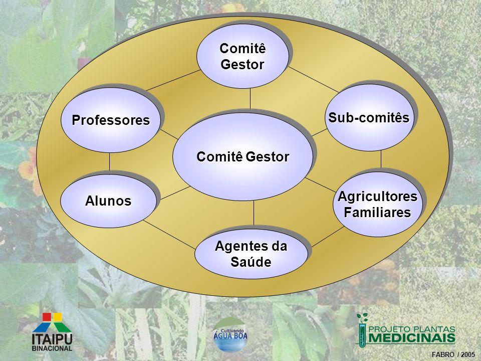 Comitê Gestor Agricultores Familiares Sub-comitês Alunos Agentes da Saúde Professores Comitê Gestor