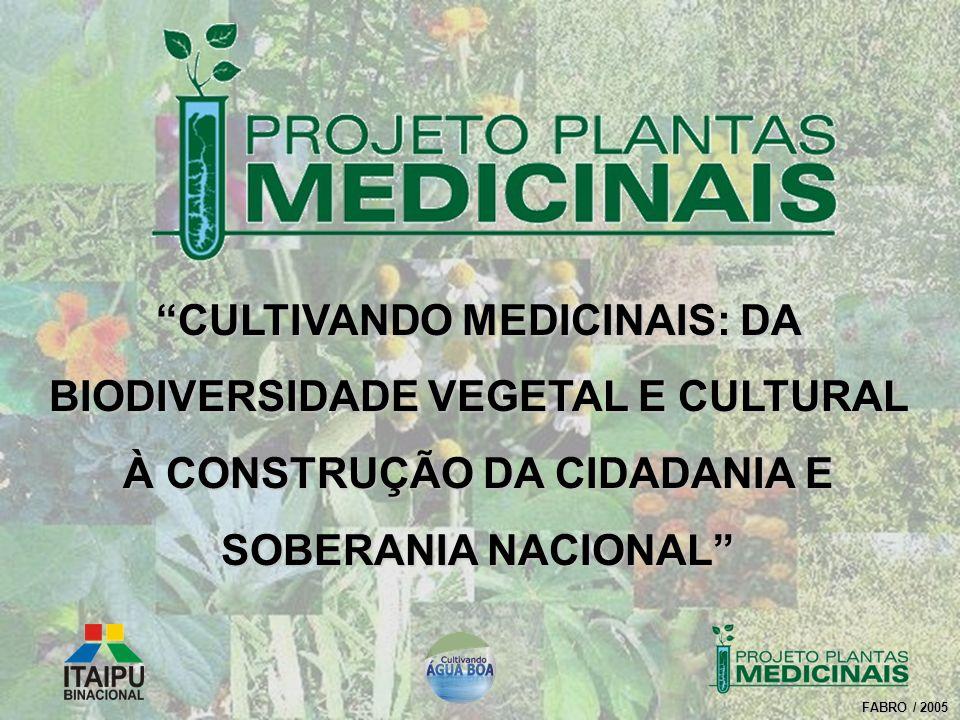 CULTIVANDO MEDICINAIS: DA BIODIVERSIDADE VEGETAL E CULTURAL À CONSTRUÇÃO DA CIDADANIA E SOBERANIA NACIONAL