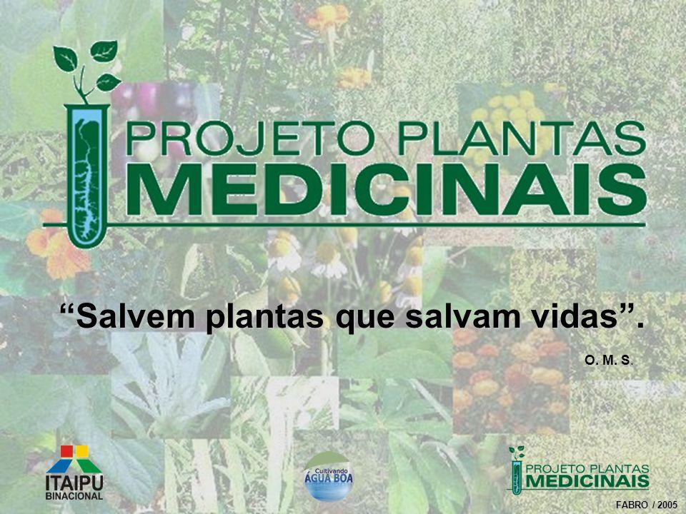 Salvem plantas que salvam vidas .