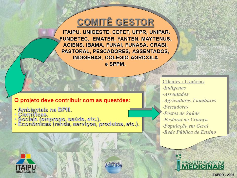 COMITÊ GESTOR ITAIPU, UNIOESTE, CEFET, UFPR, UNIPAR,