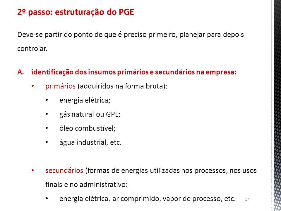 2º passo: estruturação do PGE