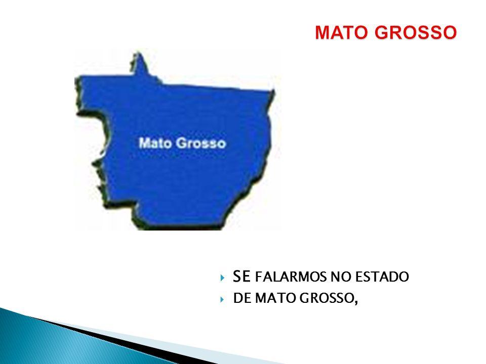 MATO GROSSO SE FALARMOS NO ESTADO DE MATO GROSSO,
