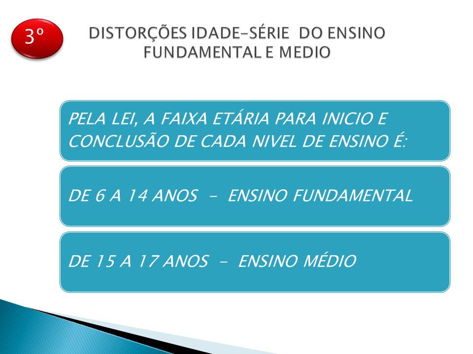 DISTORÇÕES IDADE-SÉRIE DO ENSINO FUNDAMENTAL E MEDIO