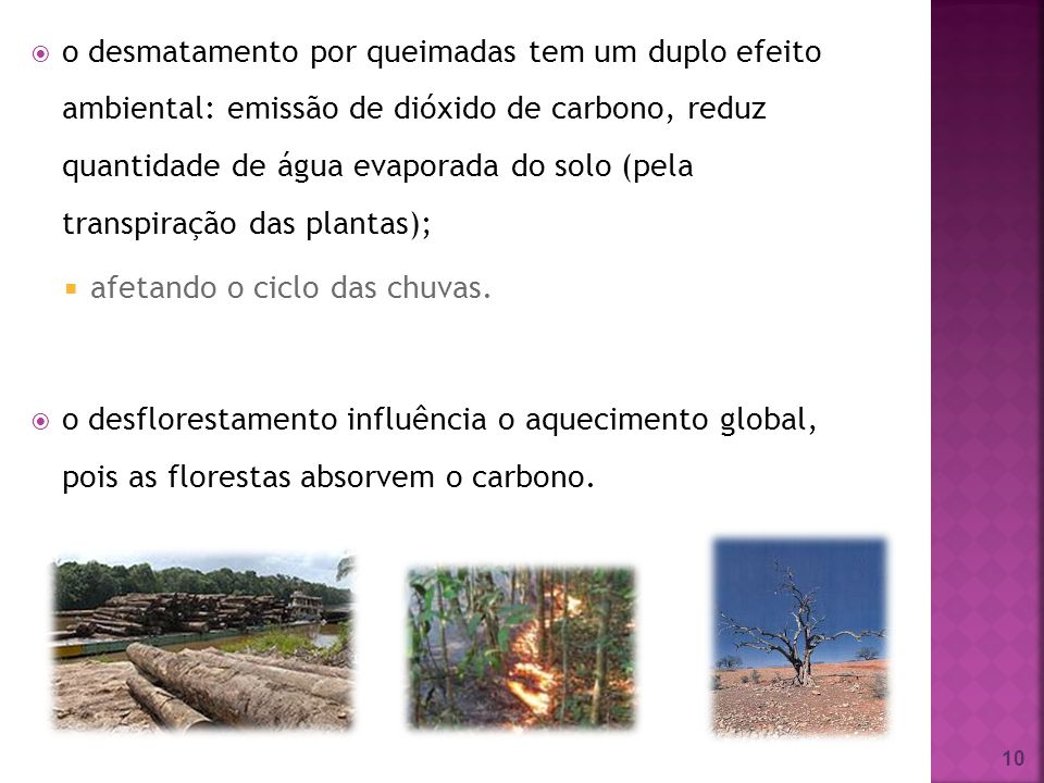 o desmatamento por queimadas tem um duplo efeito ambiental: emissão de dióxido de carbono, reduz quantidade de água evaporada do solo (pela transpiração das plantas);