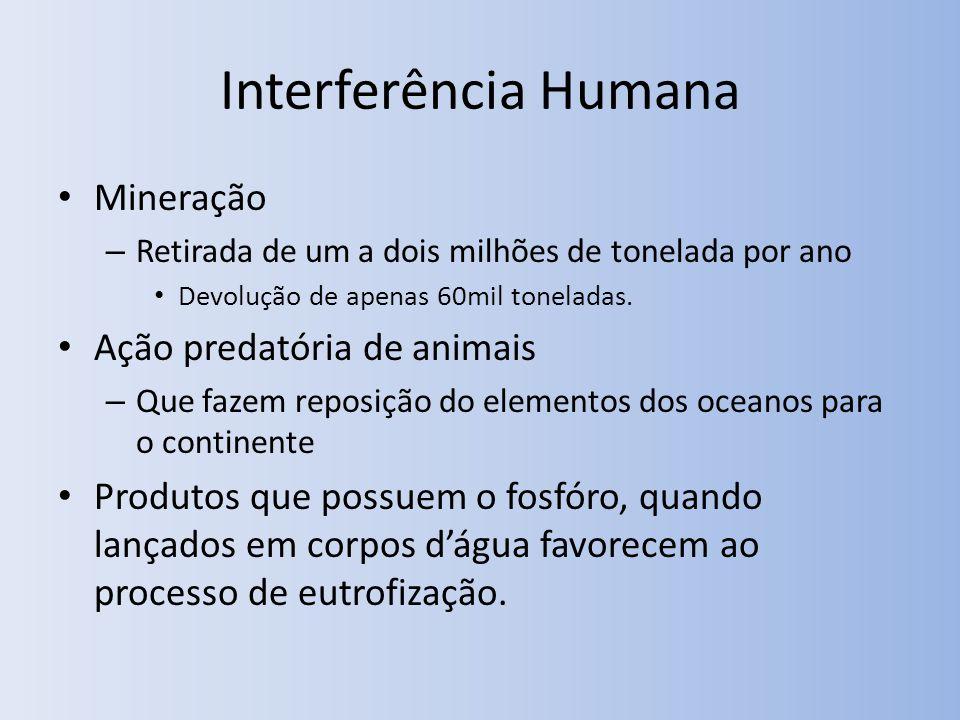 Interferência Humana Mineração Ação predatória de animais