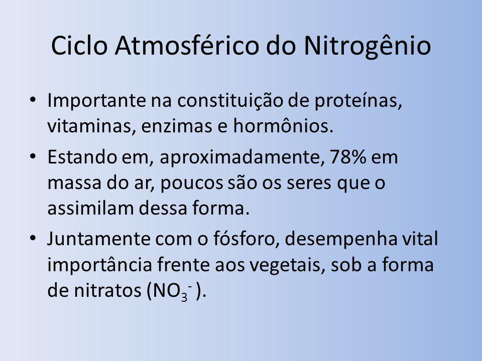 Ciclo Atmosférico do Nitrogênio