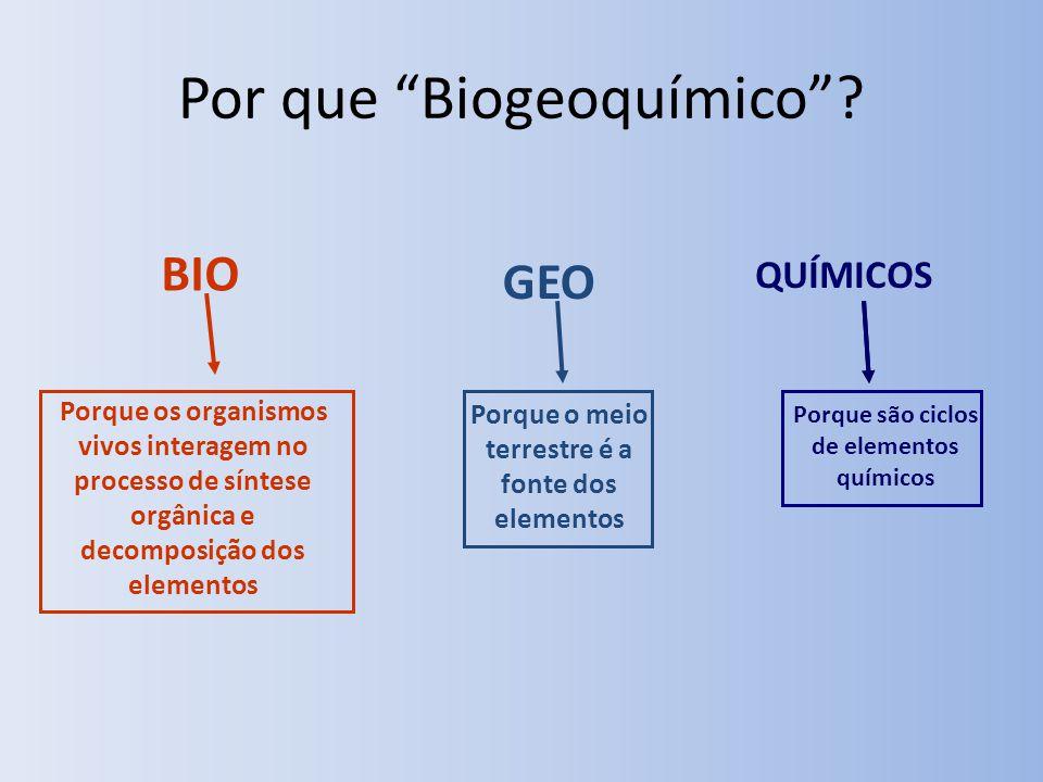 Por que Biogeoquímico