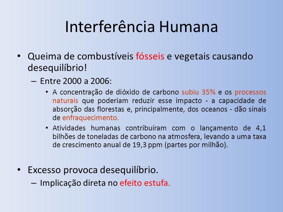 Interferência Humana Queima de combustíveis fósseis e vegetais causando desequilíbrio! Entre 2000 a 2006: