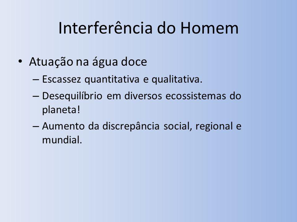 Interferência do Homem