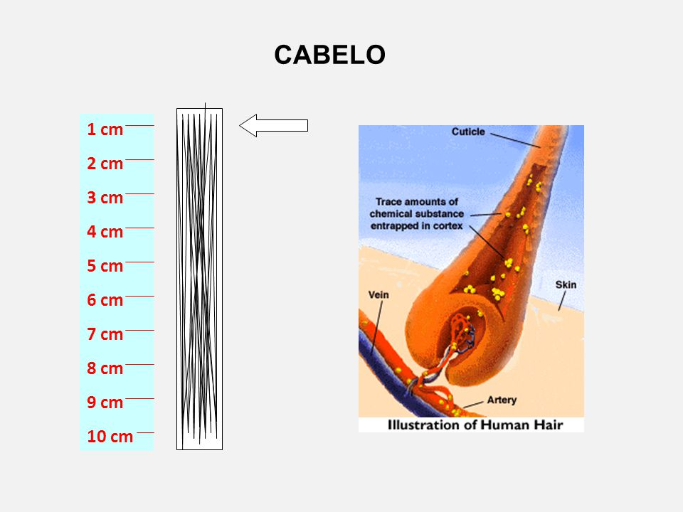 CABELO 1 cm 2 cm 3 cm 4 cm 5 cm 6 cm 7 cm 8 cm 9 cm 10 cm