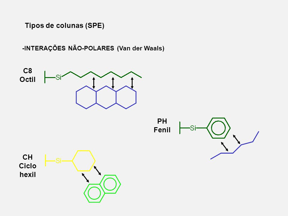C8 Octil PH Fenil CH Ciclo hexil