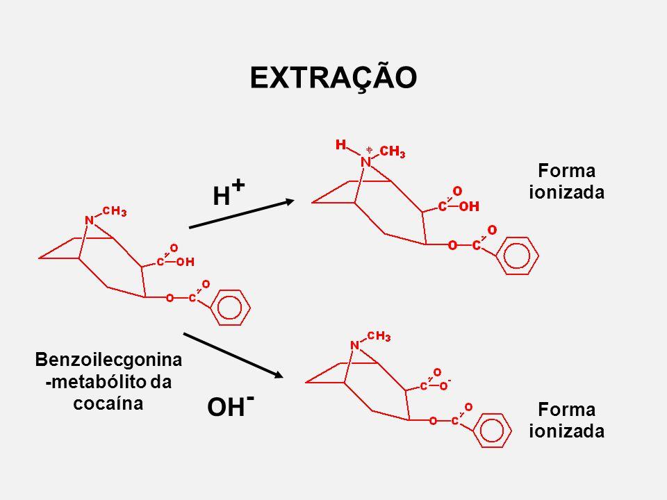 Benzoilecgonina -metabólito da cocaína