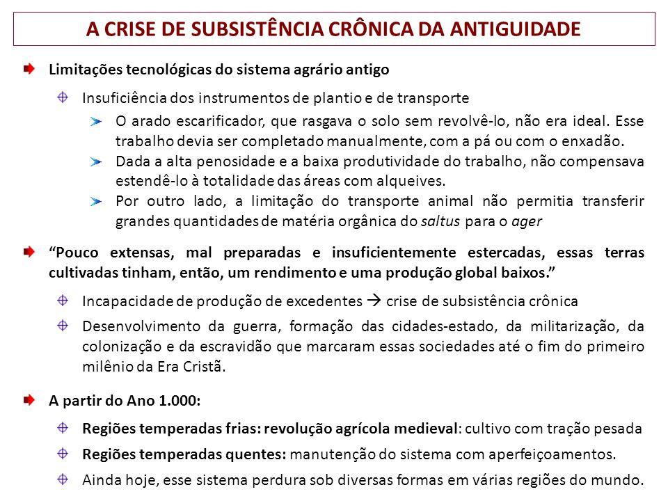 A CRISE DE SUBSISTÊNCIA CRÔNICA DA ANTIGUIDADE