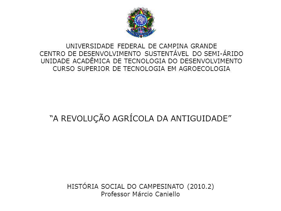 A REVOLUÇÃO AGRÍCOLA DA ANTIGUIDADE