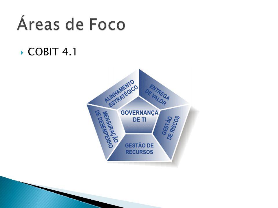 Áreas de Foco COBIT 4.1