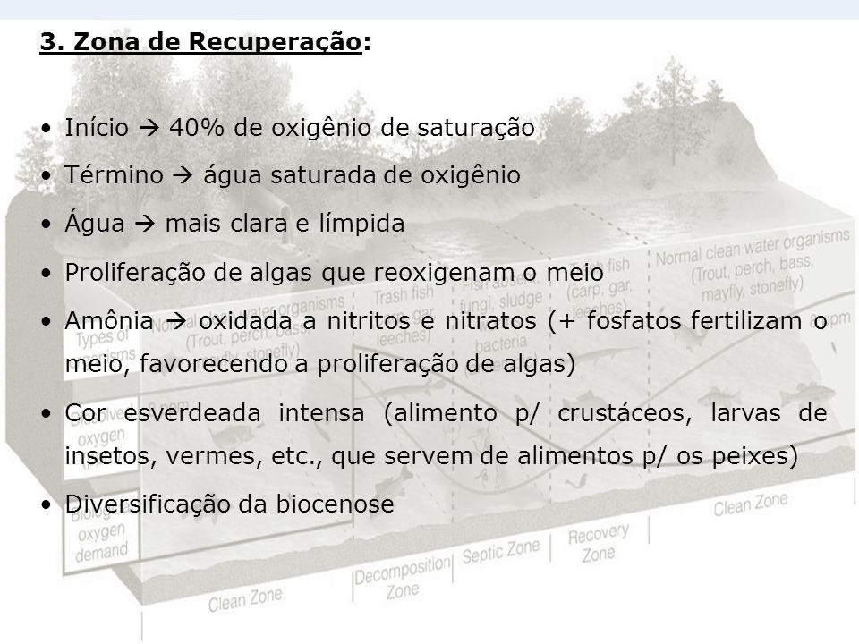 3. Zona de Recuperação: Início  40% de oxigênio de saturação. Término  água saturada de oxigênio.