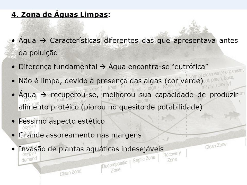 4. Zona de Águas Limpas: Água  Características diferentes das que apresentava antes da poluição.