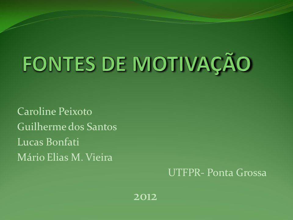 FONTES DE MOTIVAÇÃO 2012 Caroline Peixoto Guilherme dos Santos