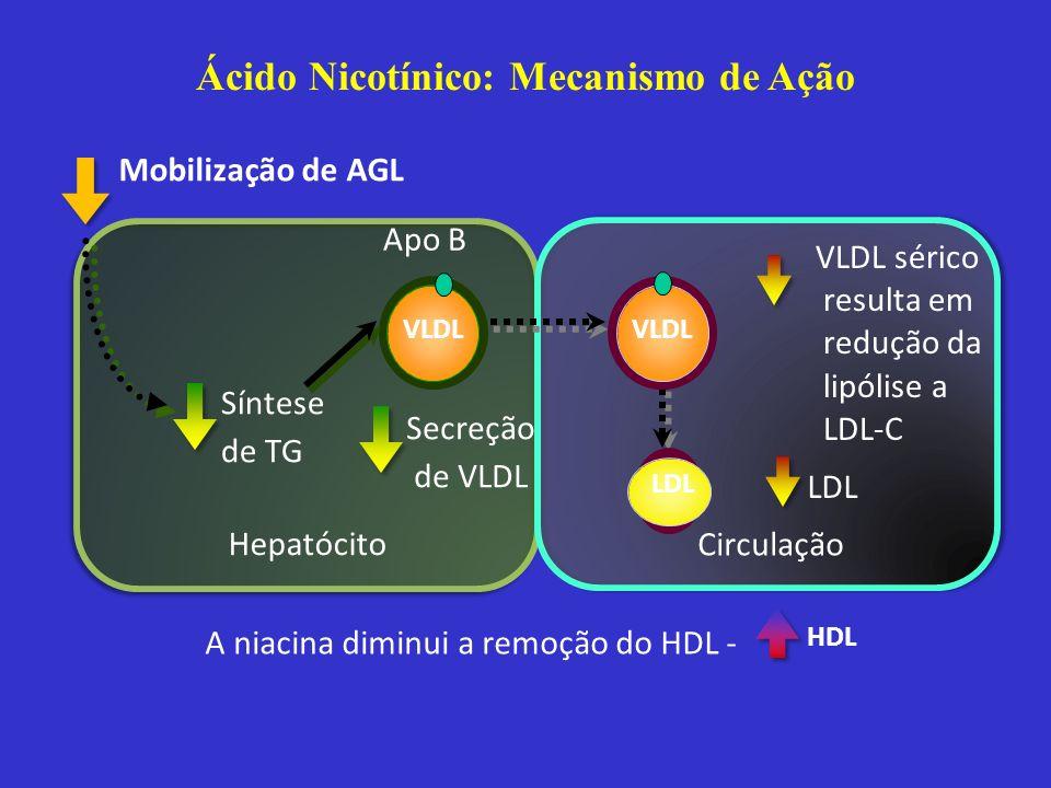 Ácido Nicotínico: Mecanismo de Ação