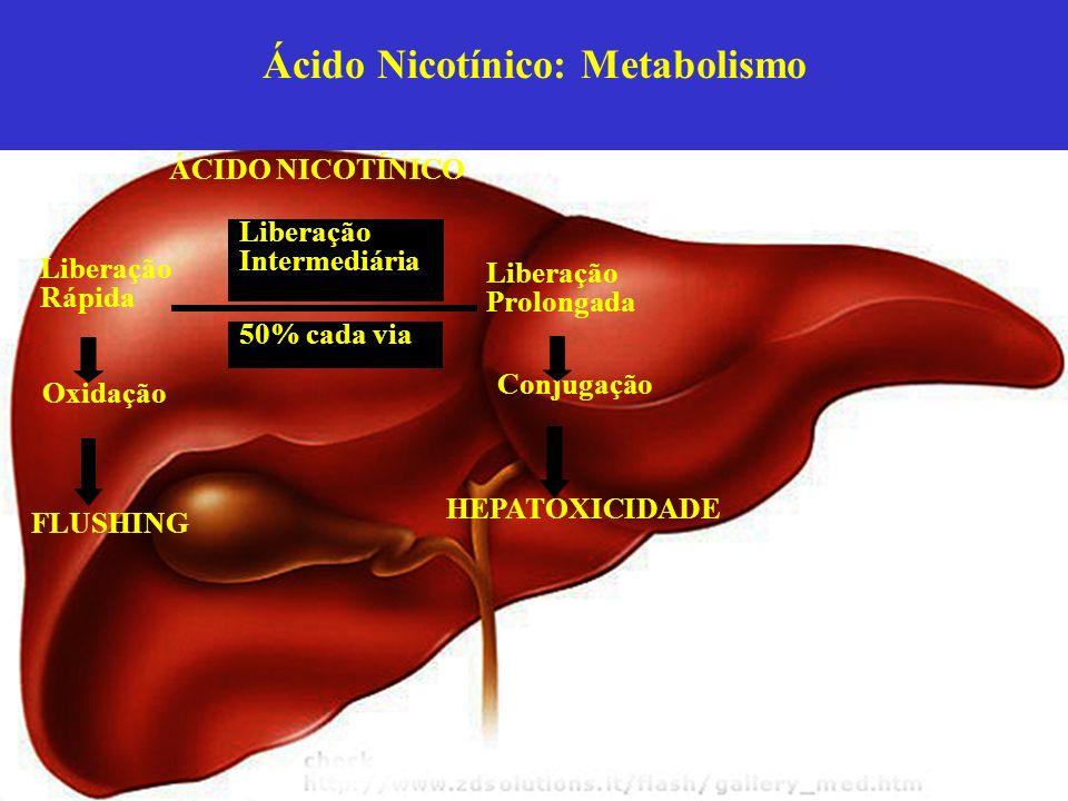 Ácido Nicotínico: Metabolismo