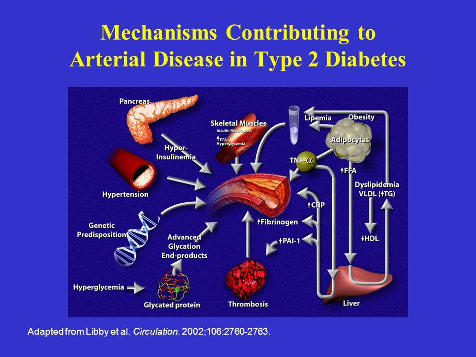 Mechanisms Contributing to Arterial Disease in Type 2 Diabetes