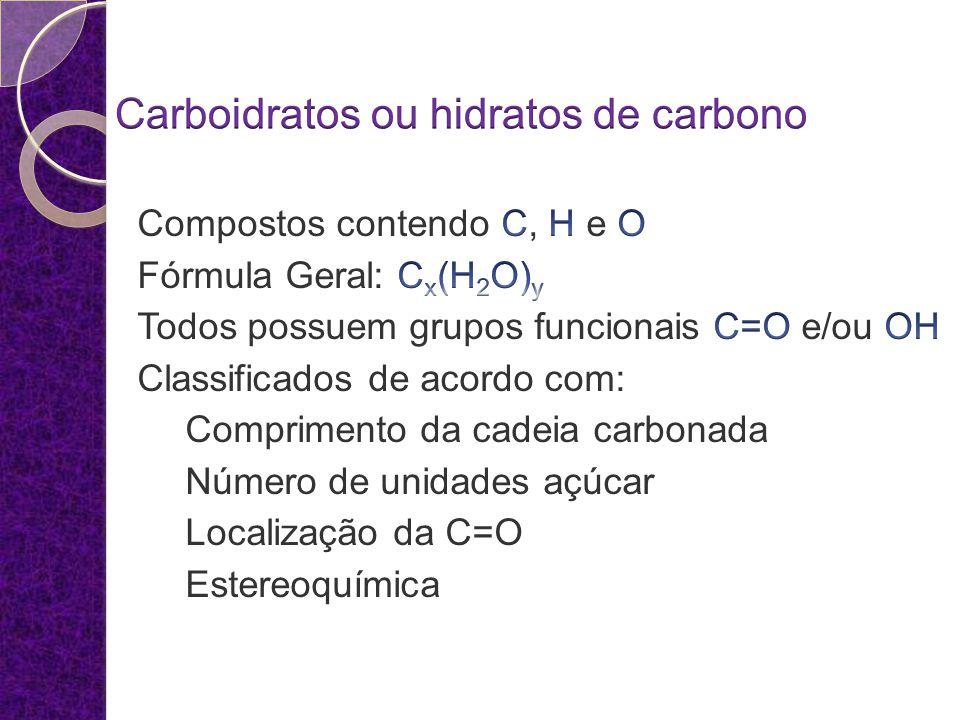 Carboidratos ou hidratos de carbono