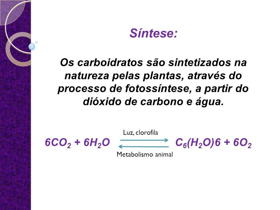 Síntese: Os carboidratos são sintetizados na natureza pelas plantas, através do processo de fotossíntese, a partir do dióxido de carbono e água.