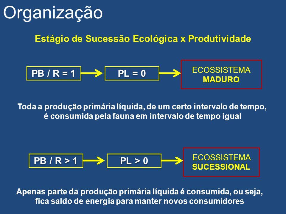 Organização Estágio de Sucessão Ecológica x Produtividade PB / R = 1