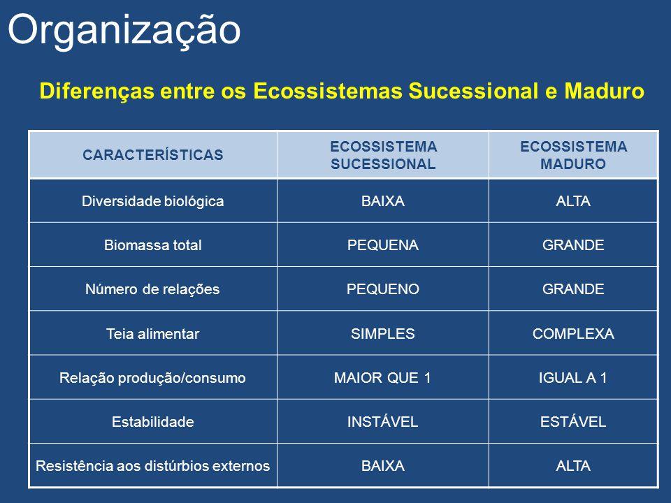 Organização Diferenças entre os Ecossistemas Sucessional e Maduro