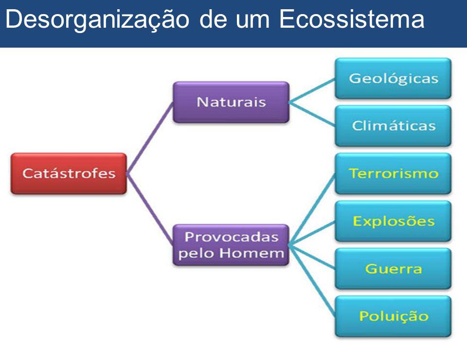Desorganização de um Ecossistema