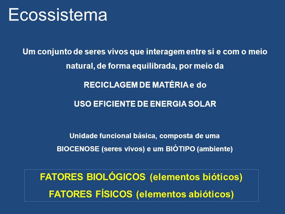 Ecossistema FATORES BIOLÓGICOS (elementos bióticos)