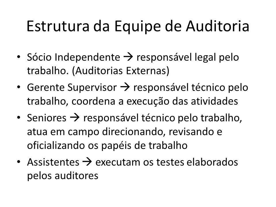 Estrutura da Equipe de Auditoria