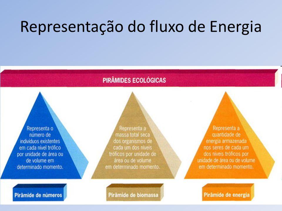 Representação do fluxo de Energia