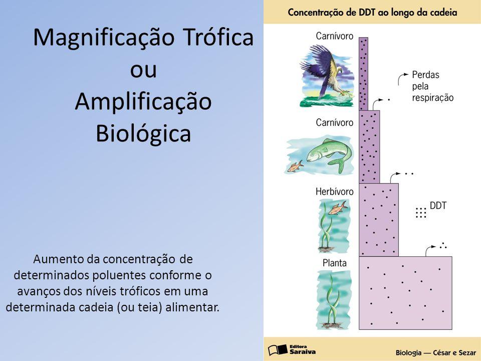 Magnificação Trófica ou Amplificação Biológica