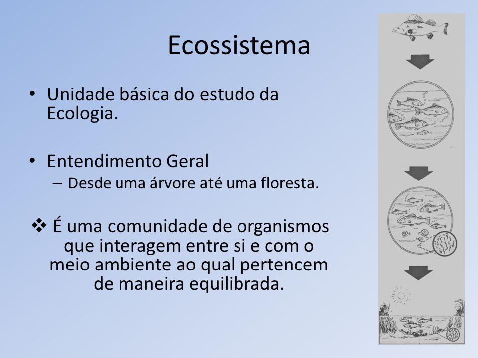 Ecossistema Unidade básica do estudo da Ecologia. Entendimento Geral