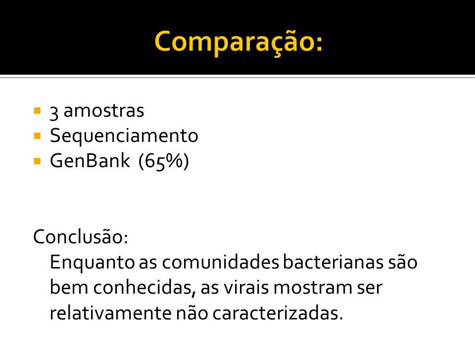 Comparação: 3 amostras Sequenciamento GenBank (65%) Conclusão: