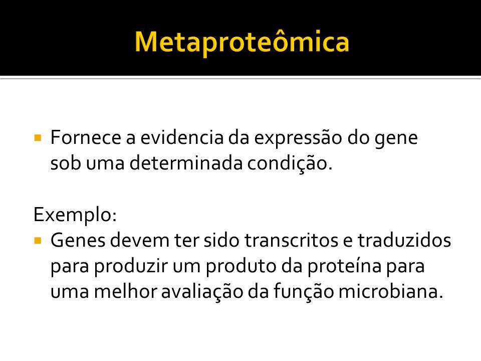 Metaproteômica Fornece a evidencia da expressão do gene sob uma determinada condição. Exemplo: