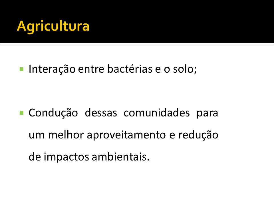 Agricultura Interação entre bactérias e o solo;