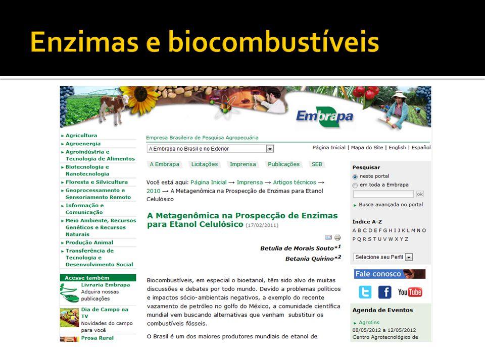 Enzimas e biocombustíveis