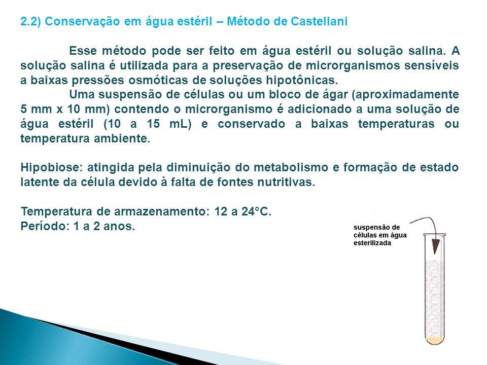 2.2) Conservação em água estéril – Método de Castellani