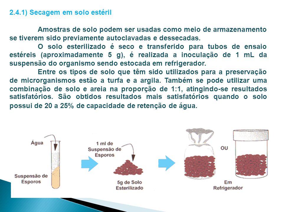 2.4.1) Secagem em solo estéril