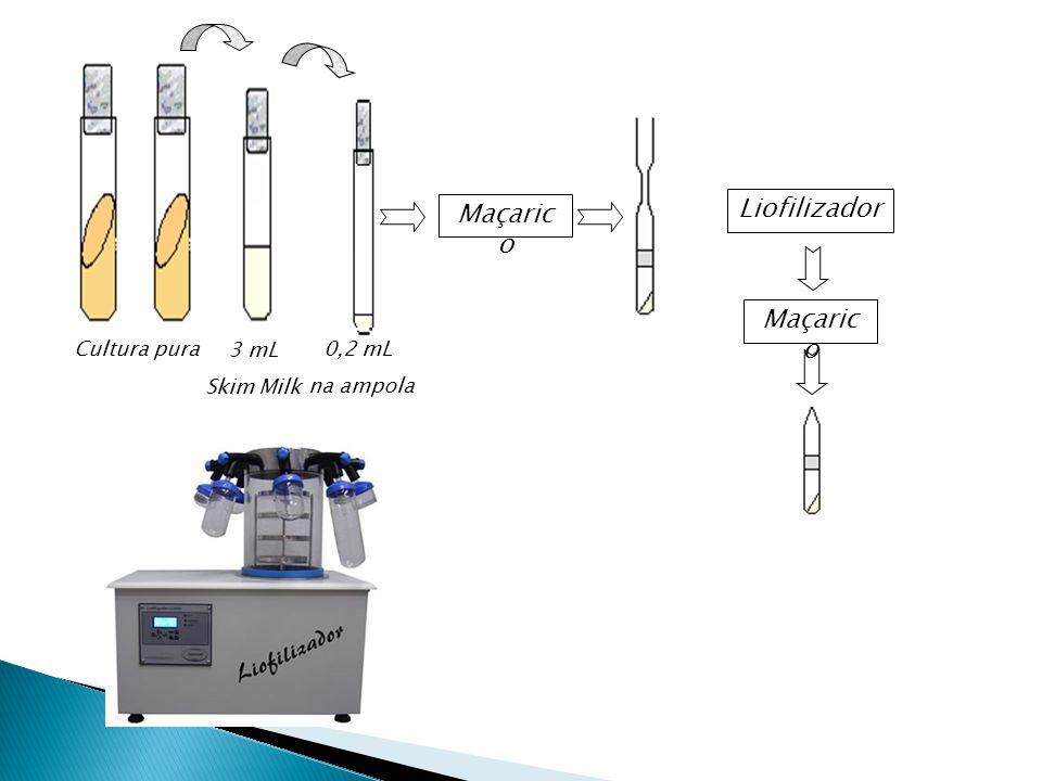 3 mL Skim Milk Cultura pura 0,2 mL na ampola Maçarico Liofilizador