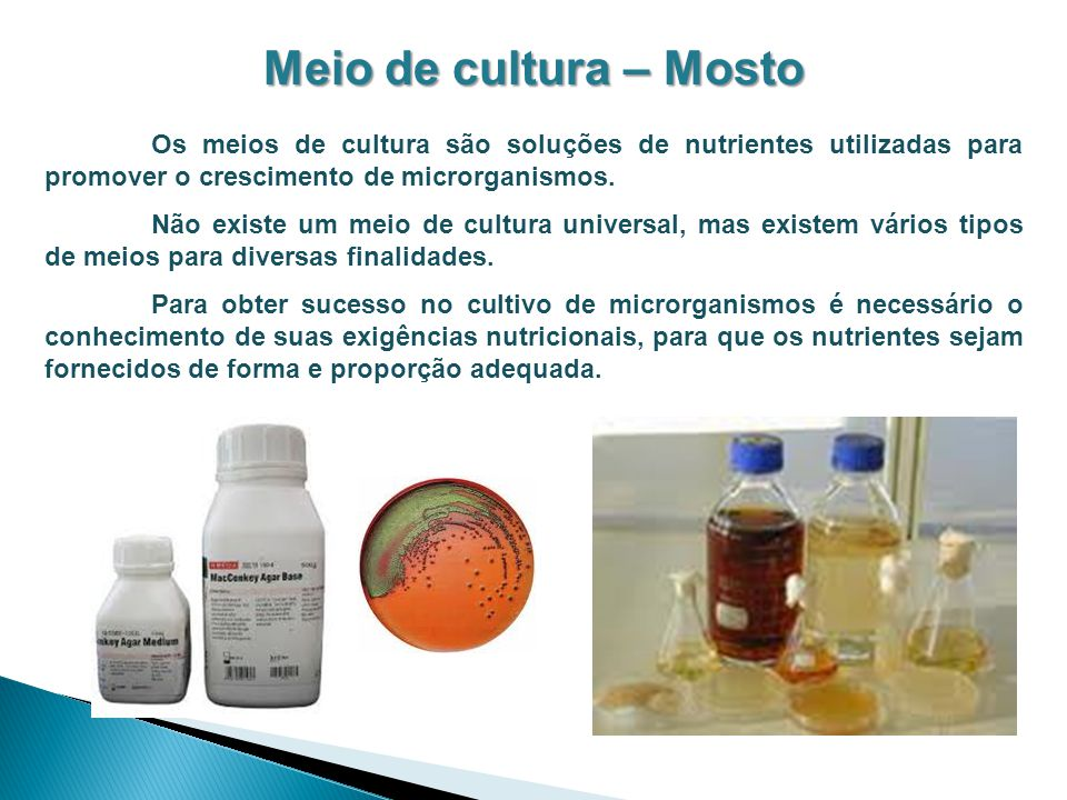 Meio de cultura – Mosto Os meios de cultura são soluções de nutrientes utilizadas para promover o crescimento de microrganismos.