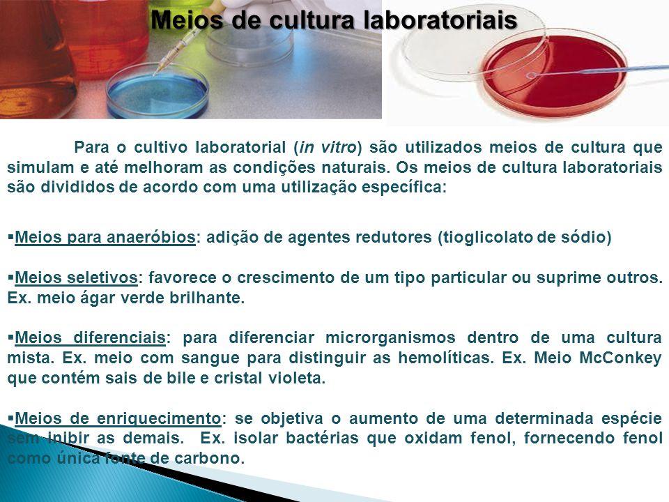Meios de cultura laboratoriais