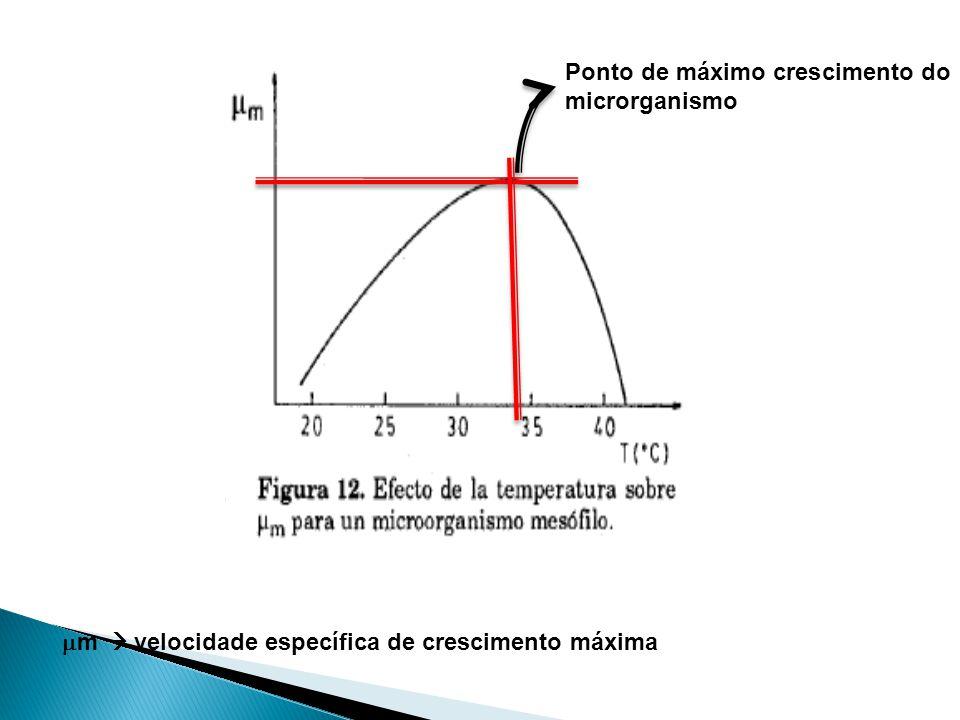 Ponto de máximo crescimento do microrganismo