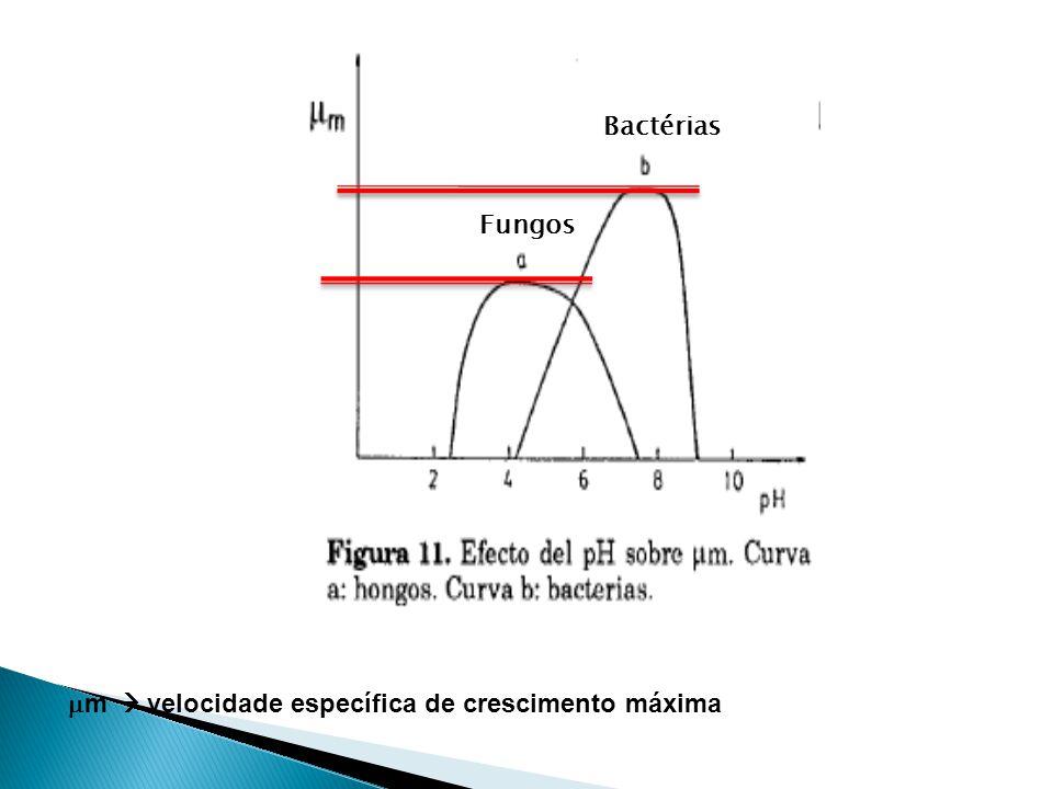 Bactérias Fungos m  velocidade específica de crescimento máxima